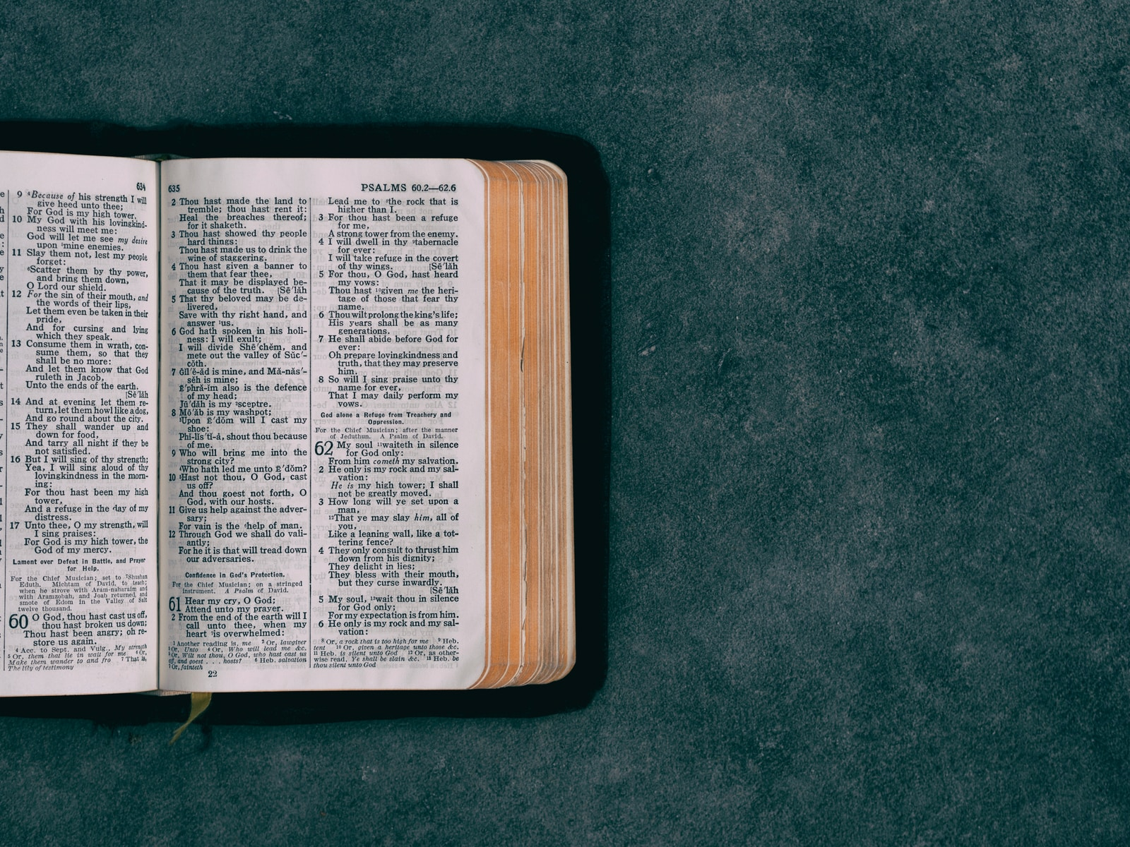 open pocket bible on green surface